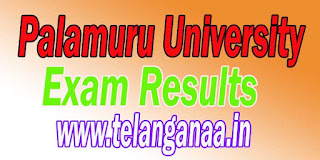 Palamuru University UG Degree 1st,2nd & 3rd Year Regular March 2016 Revaluation Results