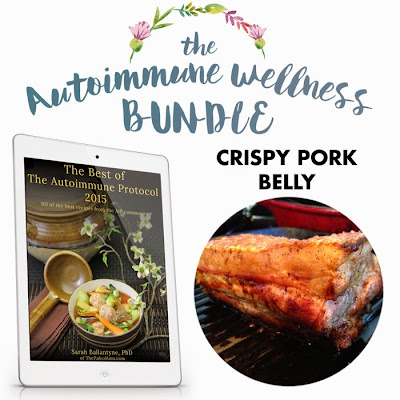 Autoimmune wellness bundle recipe contribution