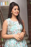 Nikki Galrani at Prema leela pelli gola trailer Launch ~  Exclusive 016.JPG