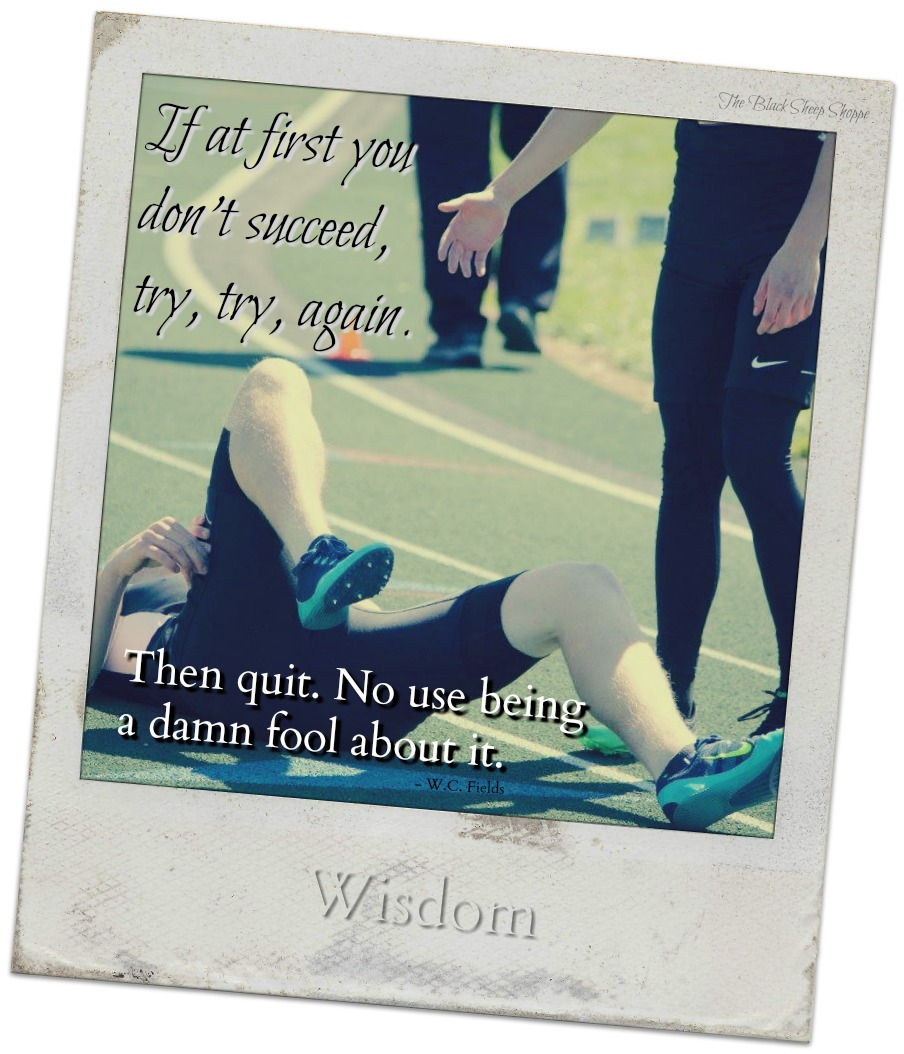 If at first you don't succeed, try, try, again. Then quit. No use being a damn fool about it.