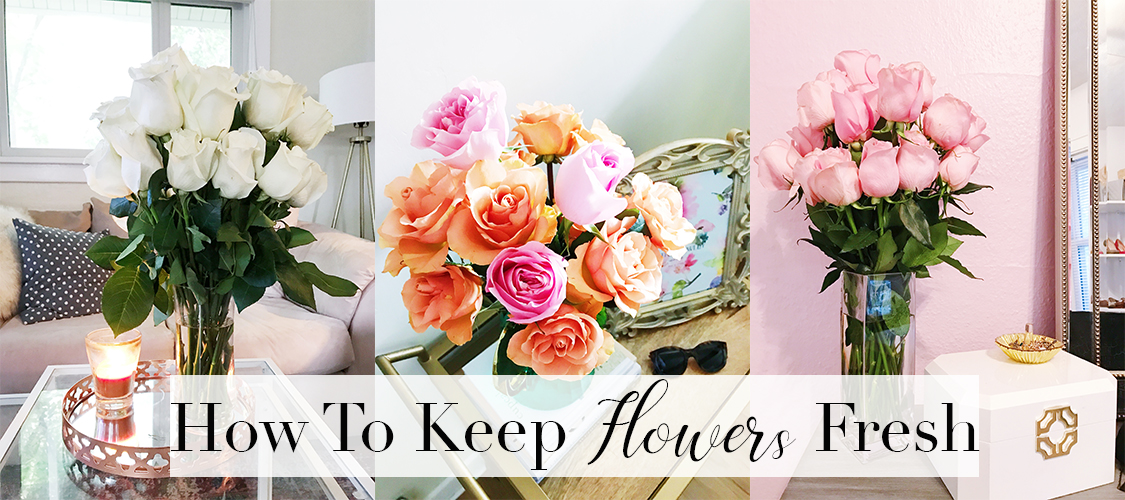 How To Keep Flowers Fresh Longer 💐 - Tay Meets World