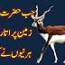Jab Hazrat Adam (a) Zameen Par aye To Kaya Howa?