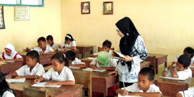 tunjangan profesi guru