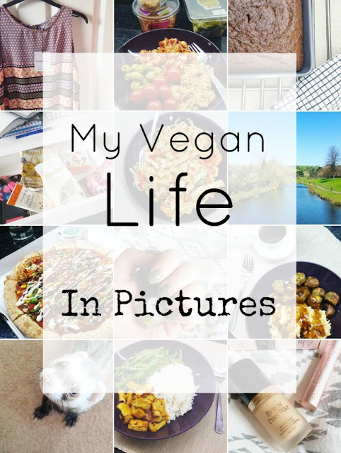 My Vegan Life - That Lisa Clare