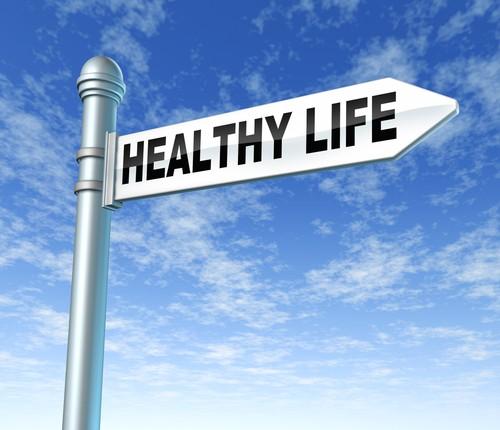 Diet Dan Pengaruhnya Terhadap Organ Tubuh Manusia