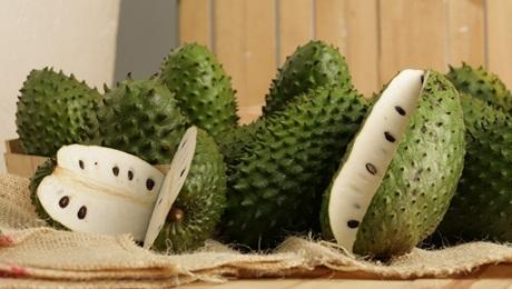 buah sirsak matang