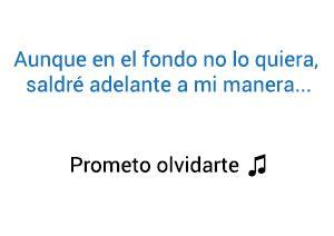 Tony Dize Prometo Olvidarte significado de la canción.