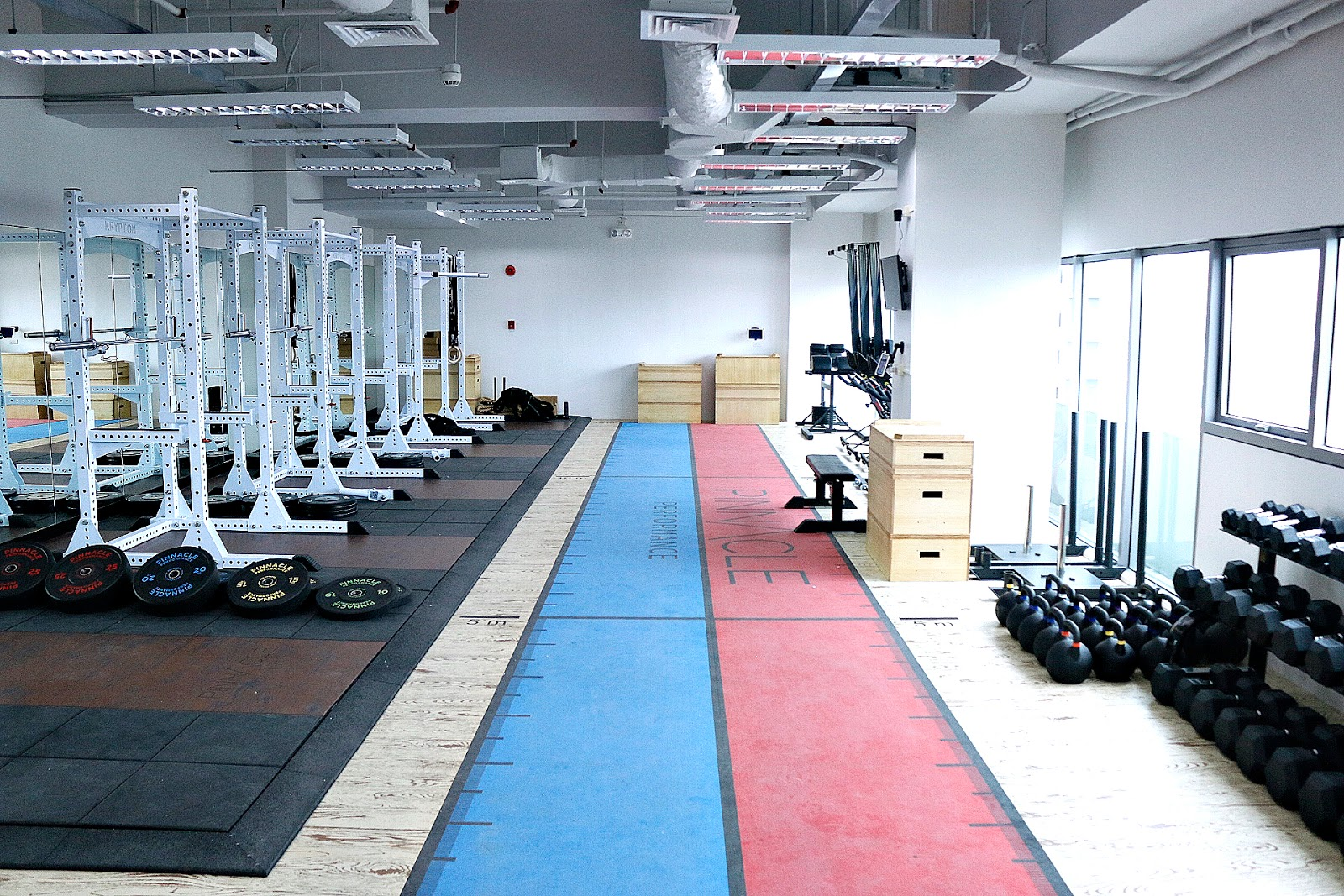 GASTRONOMY by Joy: Pinnacle Performance: A World Class Athletic Physical  Development Now Serves the Metro