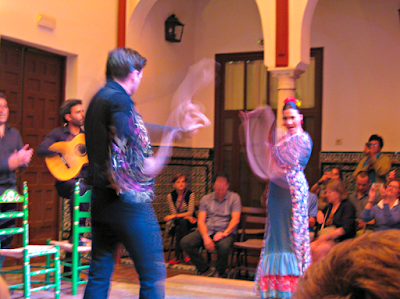 Seville Flamenco Show in motion