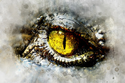 A reptilian eye stares out from a mass of ice.