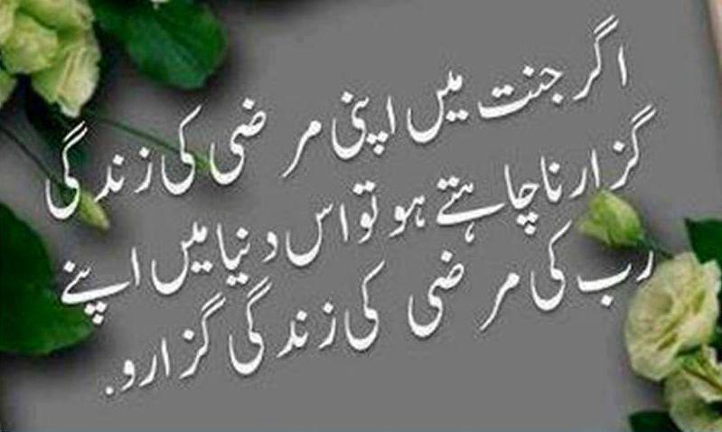 Quotes About Human Nature In Urdu