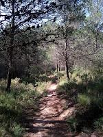 turismo-rural-el-burgo-malaga-senderos