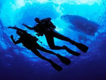 Apa yang Best kat Pulau Perhentian; A Diver Perspective