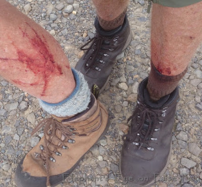Silvermine battle scars from trail blazing