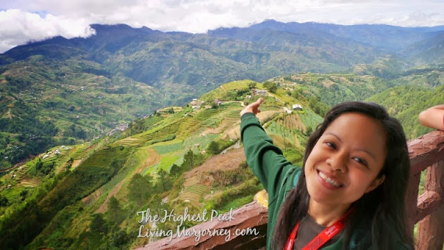 Rice Terraces 2013