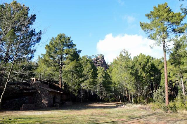 tormon-casa-forestal-rodeno