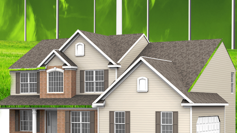 Interesting Tips For Green Living