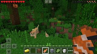 Download Minecraft: Pocket Edition  v0.15.8.1 APK MOD Terbaru
