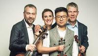 CUARTETO de Violines DIOTIMA