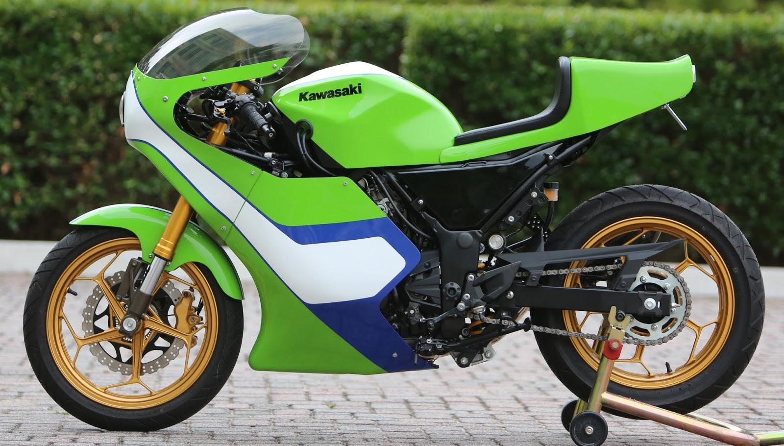 Kawasaki 300 Ninja H2 Gary Nixon Race Bike Replica 99garage