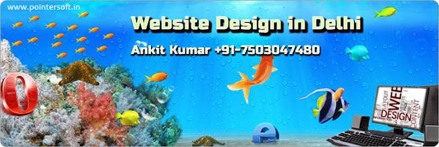 Best Responsive and Cheap Website Design Delhi - Website Designing Company in Delhi