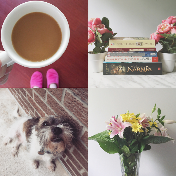 instagram instafriday bbloggers coffee books dog flowers