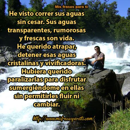 El Río Y Yo Reflexiones De Vida Mis Frases Para Ti