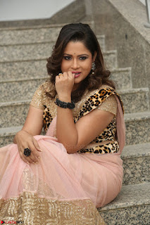 Shilpa Chakravarthy in Lovely Designer Pink Saree with Cat Print Pallu 054.JPG