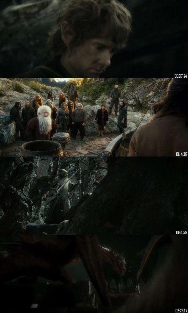 The Hobbit The Desolation Of Smaug 2013 BRRip 720p 480p Dual Audio Hindi English Full Movie Download