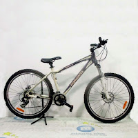 26x17 forward damiano 3x7sp mtb