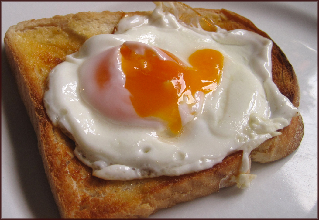 Free range egg on toast