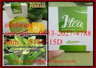 Jtea Ashitaba pemesanan : sandi maulana 085721192020 pin 5156715D