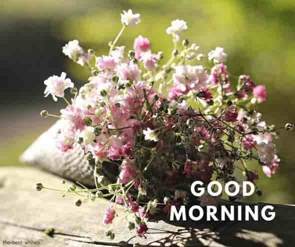 very good morning wishes images