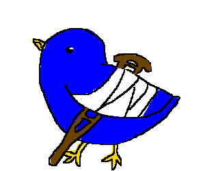 Meanderings Of My Mind Broken Winged Birds