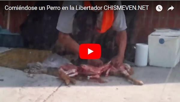 Comerse un Perro en la av Libertador, ya no es como antes