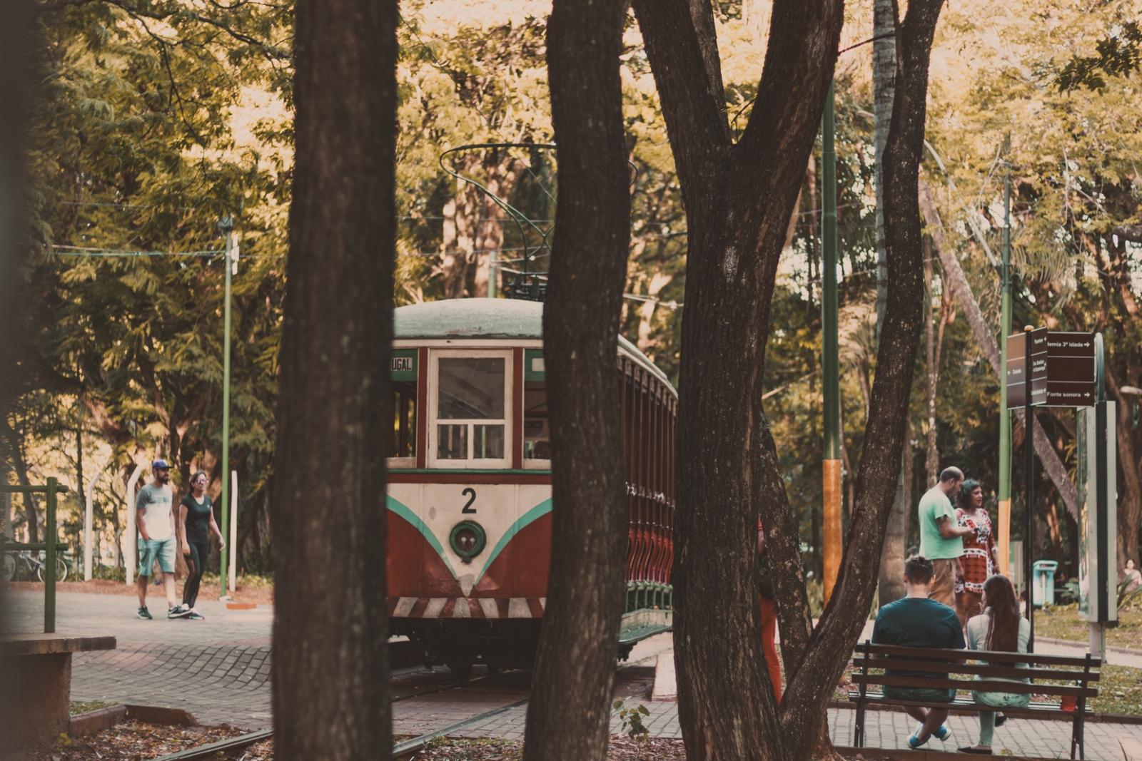 fotografando em parques