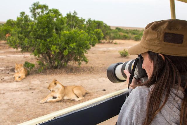 Haciendo fotos a unos leones