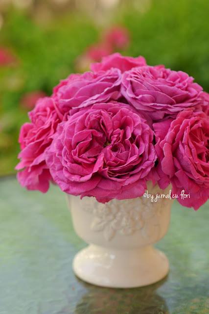 buchet de trandafiri roz in vas alb