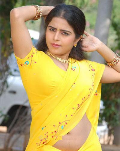 South Indian Actress In Hot Saree Navel Show Photos