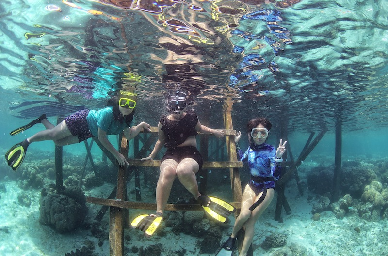 "<a href=""http://mataram.info/things-to-do-in-bali/visitindonesia-banda-marine-life-the-paradise-of-diving-topographic-point-inward-fundamental-maluku/"">Indonesia</a>best destinations : Never Destination Traveling, Never Destination Playing"