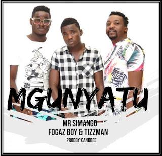 Mr Simango Ft. Fogaz Boy & Tizzman - Mgunyatu