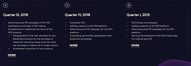 W12 ICO