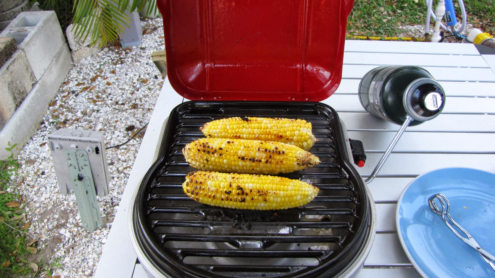 Grilling Corn on the Cob on Coleman Fold and Go Grill