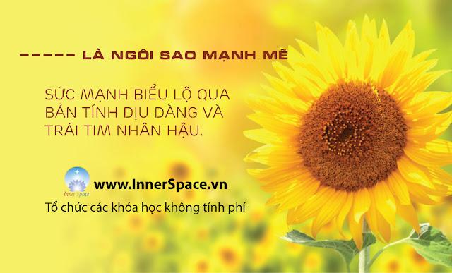 TOI-LA-NGOI-SAO-BINH-YEN-MANH-ME