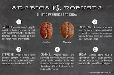 Ilustrasi perbedaan kopi arabica dengan kopi robusta. Sumber : espressoperfecto.