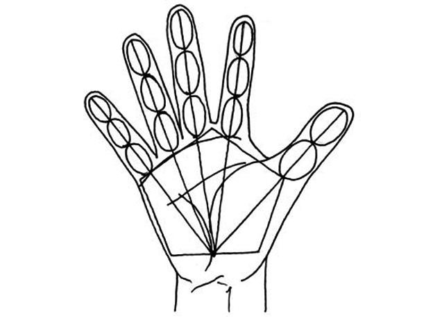 El Taller De Miguel Angel Dibujo De La Mano En 5 Pasos