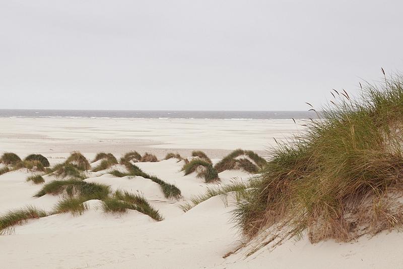 Amrum Aussichtsdüne Blick Nordsee Strand