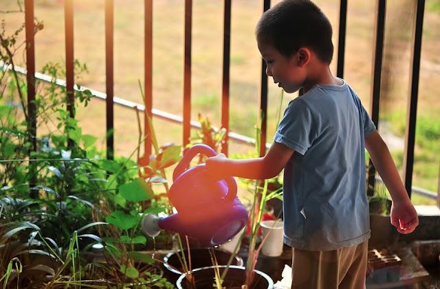 7 Ways Getting Your Children Interested In Gardening