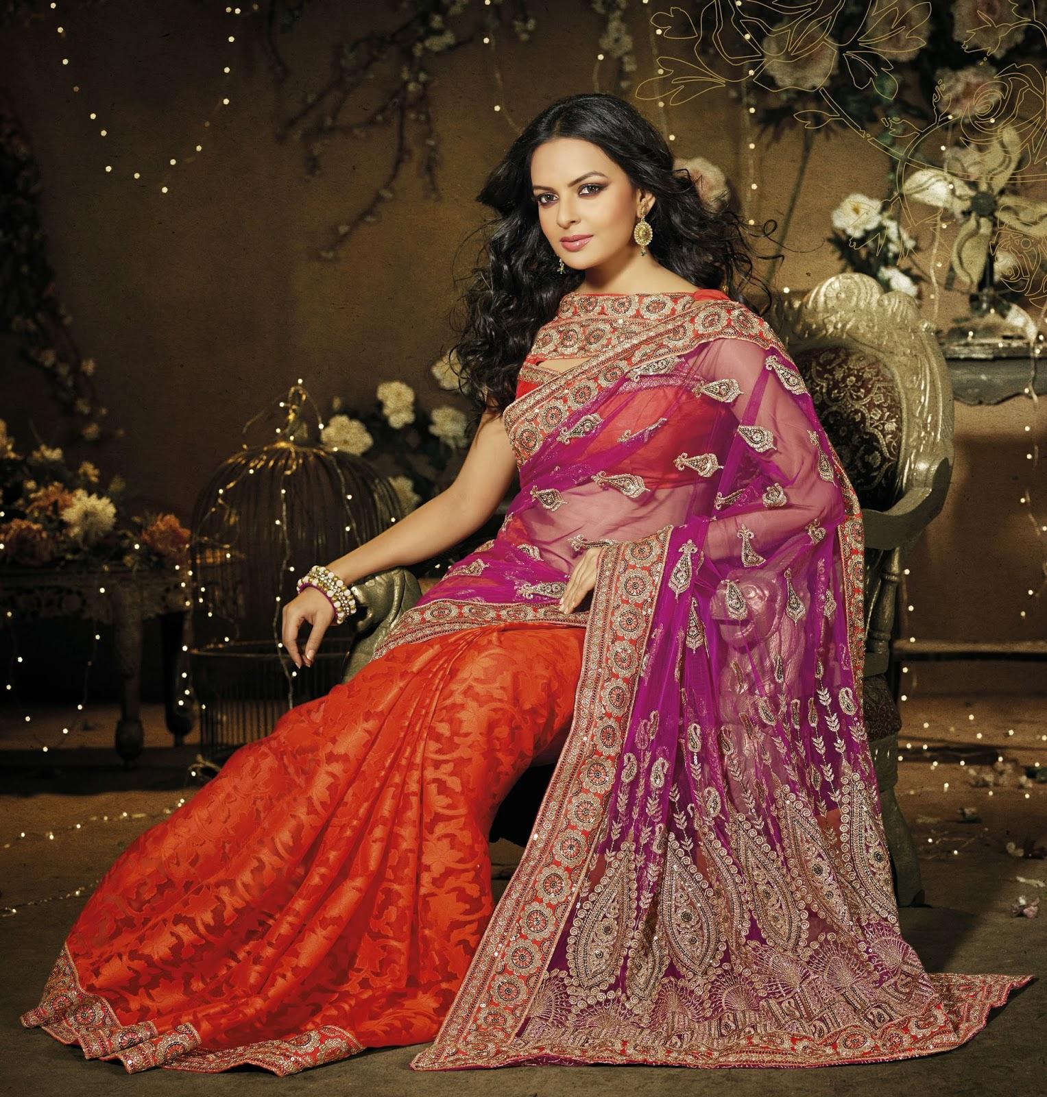 Designer Sarees Images: Festive Season Saree Collection