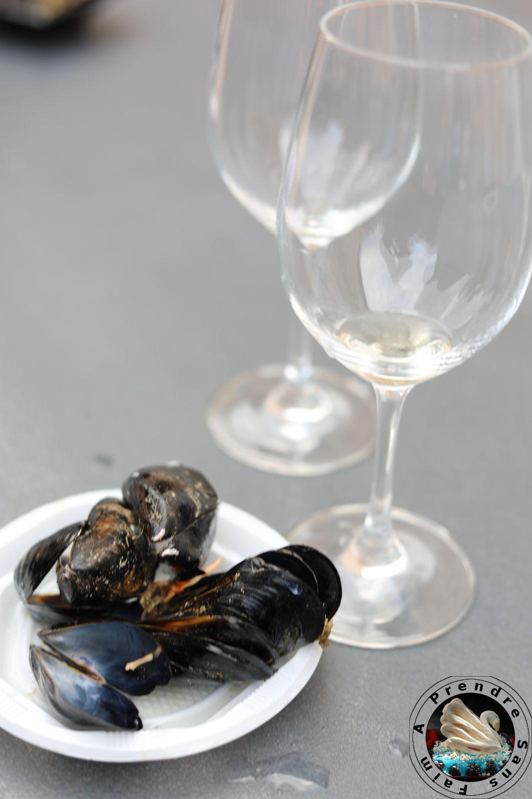 Dégustation de vins blancs au Château de Falset